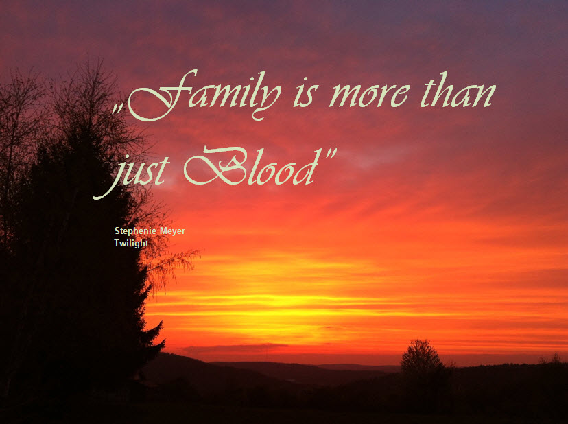 Family is more than just blood