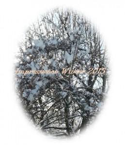 Impressionen_Winter_2015