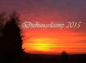 Dschungelcamp2015